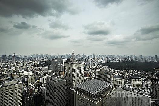 Tokyo Skyline by Ben Johnson