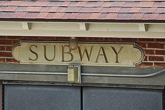 Toledo Zoo Subway II by Michiale Schneider