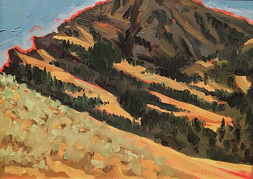 Tom Miner Basin by Les Herman