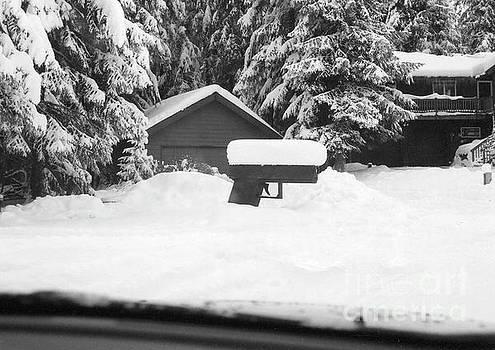Tom Ryans Neighbor Mail Box is a Gun  Juneau Alaska by John Ryan