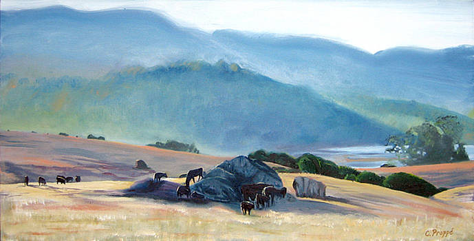 Tomales Twilight by Colleen Proppe