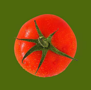 Tomato BG Green by D Plinth
