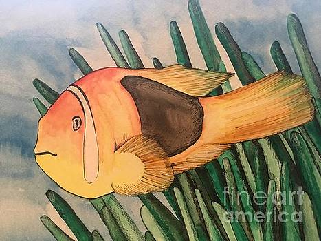 Tomato Clown Fish by Amy Brown