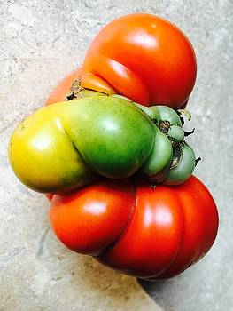 Tomato Mutation by Douglas Fromm