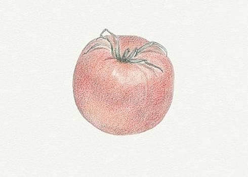 Tomato by Tara Poole