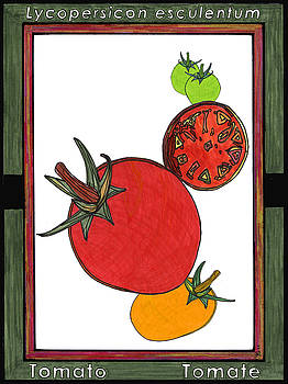 Tomato Tomate by Baya Clare