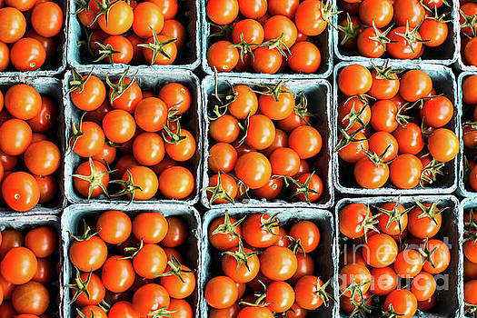 Tomatoes in paper containers by Miro Vrlik