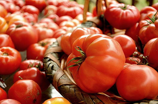 Tomatoes by Paul  Simpson