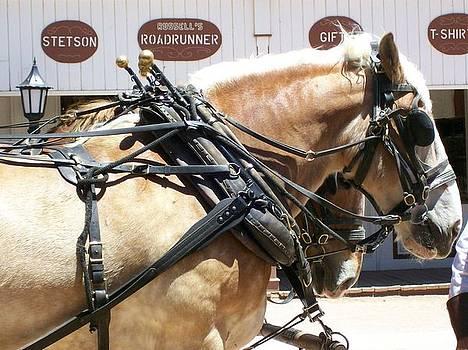 Kathleen Heese - Tombstone Horse