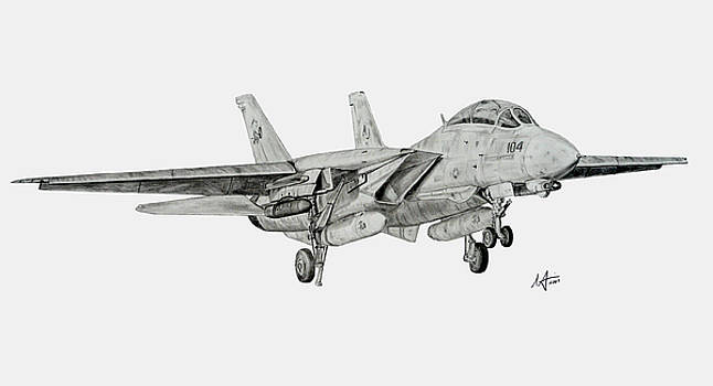 Tomcat Almost Home by Nicholas Linehan
