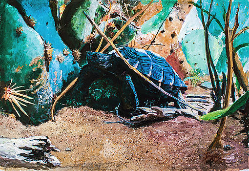 Tommy the Texas Tortoise by Toyah Taylor