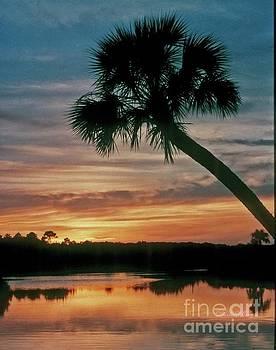 Tomoka Blue Sunset by Dodie Ulery