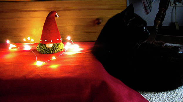 Tomte and Fluffy by Maria Joy