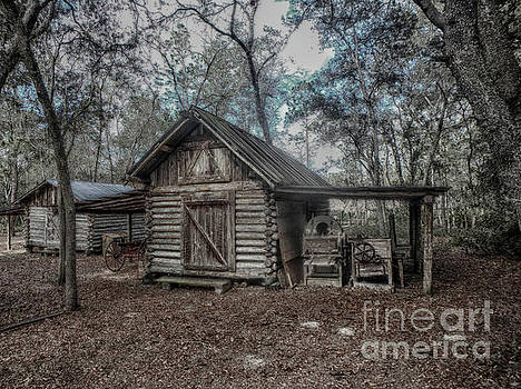 Tool Shed by Judy Hall-Folde