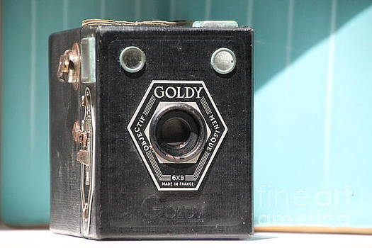 Tools of the Trade ...Goldy  by Lynn England