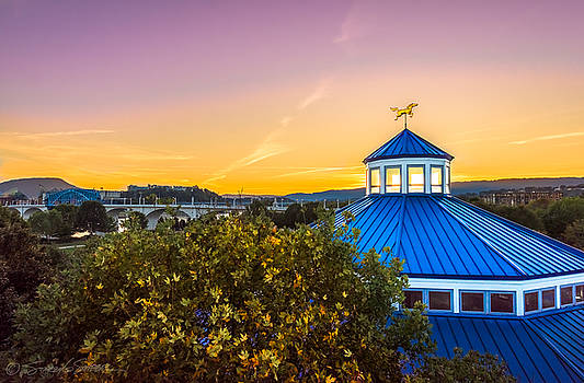 Top of the Carousel by Stacey Sather