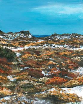 Racquel Morgan - Topsail Hill Dunes