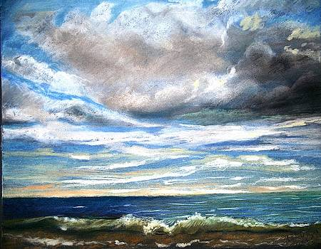 Toronto Beach With Waves by Sharon Wright
