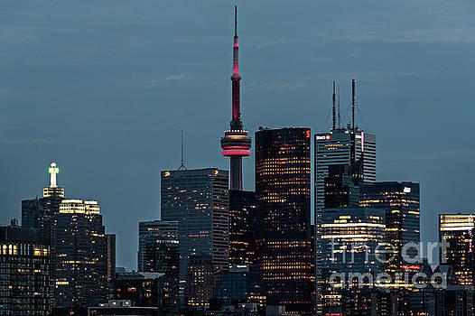 Toronto Skyline by Audrey Wilkie