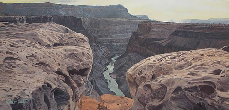 Toroweap Overlook Grand Canyon North rim by Barbara Barber