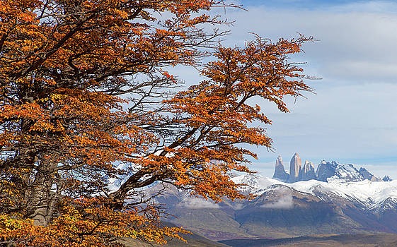 Max Waugh - Torres del Paine in Fall