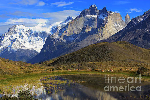 Torres del Paine National Park Patagonia Chile by Louise Heusinkveld