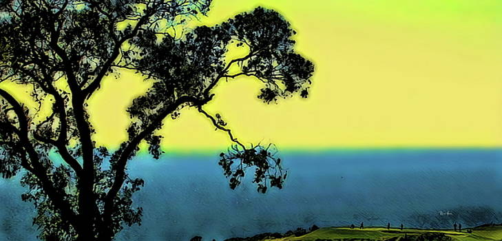 Torrey Pines Golf Course by Russ Harris