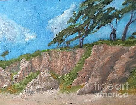 Torrey Pines on Bluff by Mark Macko
