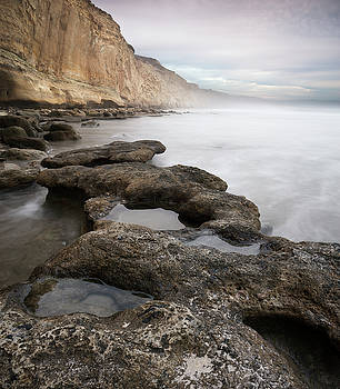 Torrey Pines Overcast Afternoon by William Dunigan