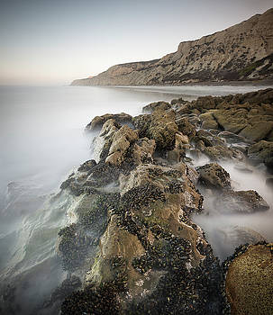 Torrey Pines Rocky Shore by William Dunigan
