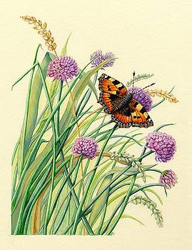 Tortoiseshell and Chives by Lynne Henderson