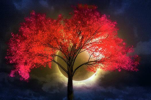 Total Eclipse by Debra and Dave Vanderlaan