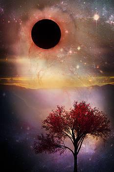 Total Eclipse of the Sun Tree Art by Debra and Dave Vanderlaan