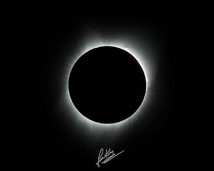 Totality Signature Edition by John King