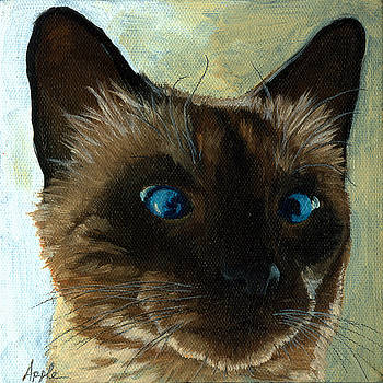Totally Siamese - cat portrait oil painting by Linda Apple