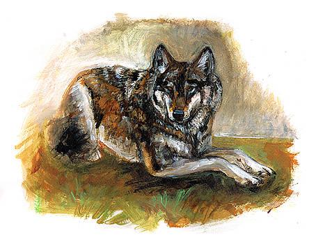 Totem Carpathian  Wolf by Belette Le Pink