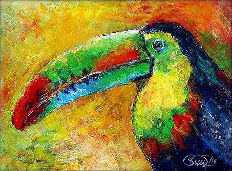 Toucan by Peter Black