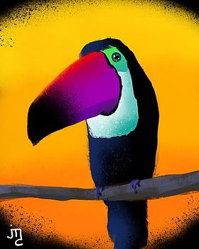 Toucan With Golden Sunset by J Travis Duncan
