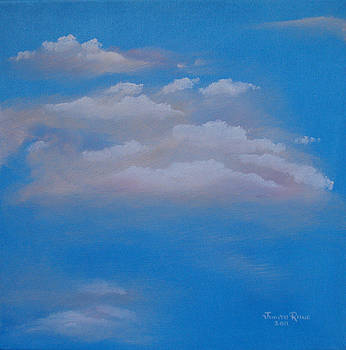Touch the Skies by Judith Rhue