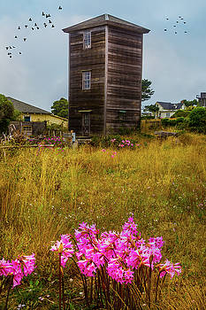 Tower Mendocino by Garry Gay