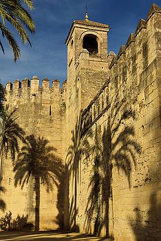 Reimar Gaertner - Tower of Homage with palm tree shadows outside Alcazar of Christ