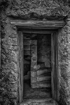 Guy Shultz - Tower Steps BW
