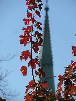 Alfred Ng - towering leaves