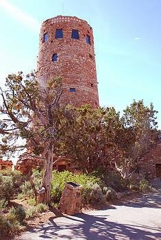 Towering Sentry by Michael Tieman