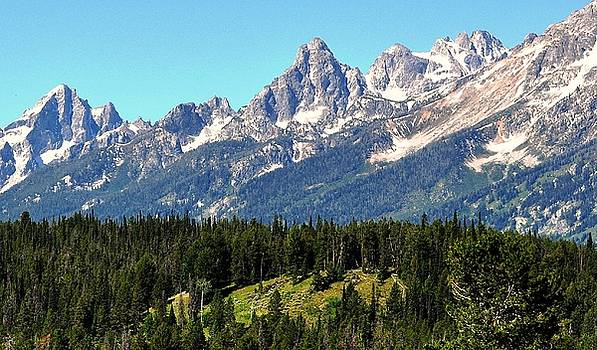 Towering Teton Range  by Fred Zilch