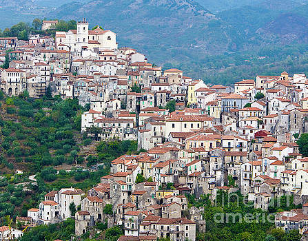 Town clinging to a hill top in Southern Italy by Damian Davies