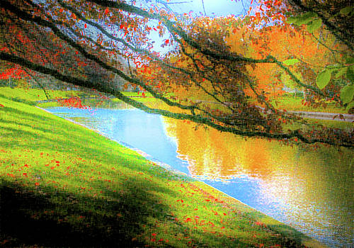 Dee Flouton - Town Pond