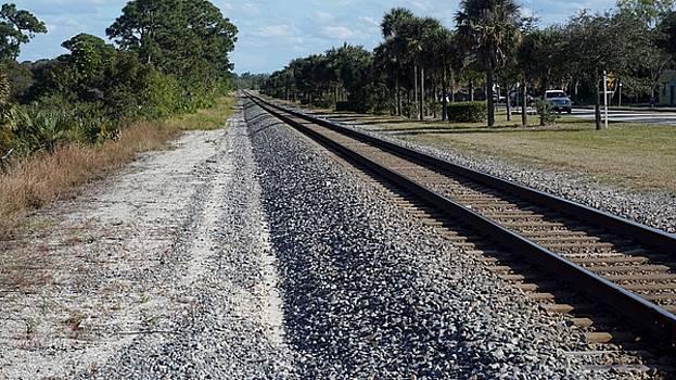 Tracks Hobe Sound, FL by John Wartman