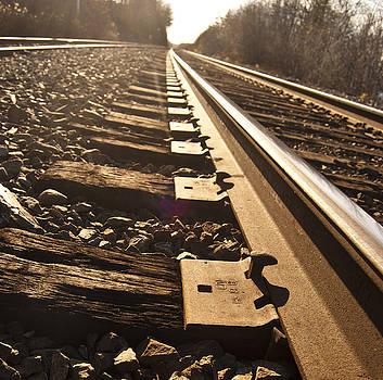 Tracks by Nancy Killam