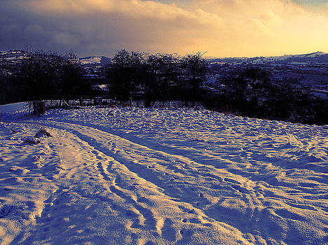 Tracks on the Snow. Powys by Alexandra Cook